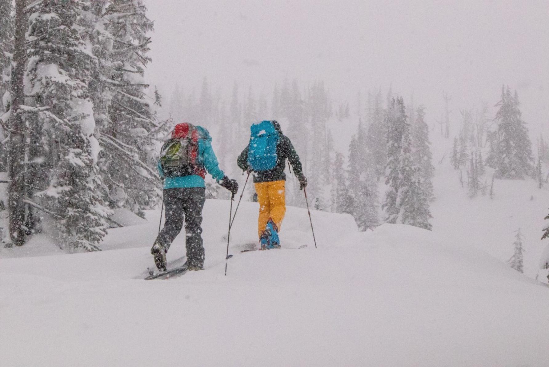 Elk Valley Snow Avalanche Workshop