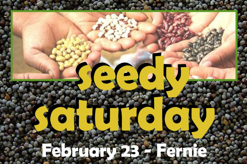 Fernie Seedy Saturday
