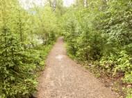 Fernie gravel trail