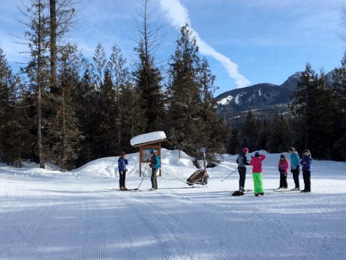 Family Nordic Ski