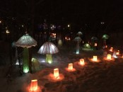 Into The Woods - Fernie Lantern Festival 2016 - mushrooms