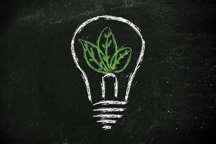 Dieses Fernstudium kombiniert Umwelt- und Bildungswissen und gibt Ihnen ein vielseitiges Rüstzeug mit auf dem Weg. © faithie - Fotolia.com