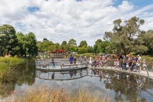 Tim Neville Arboretum. Photo by Barbara Oehring