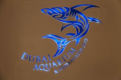 Dubai_7984