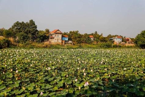 phnompenh_5951
