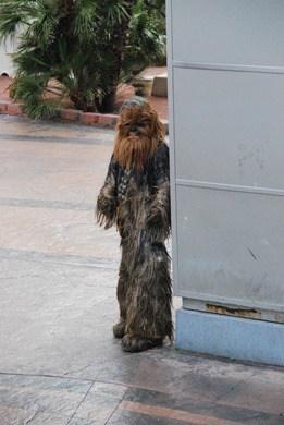 05_Star-Wars-Wookie-Las-Vegas
