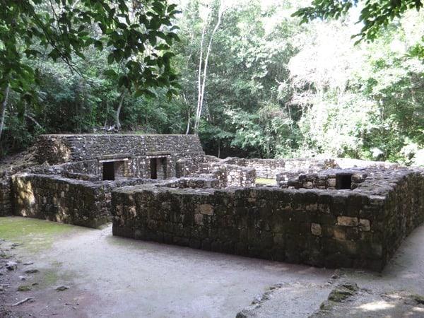 Calakmul Mexiko Maya Hochburg Ruine Wohngebäude Urwald Dschungel