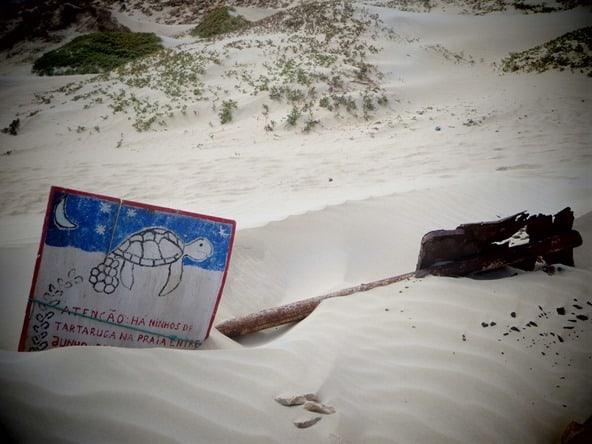 05_Cabo-Santa-Maria-Schildkroeten-Schild-Boa-Vista-Kap-Verden