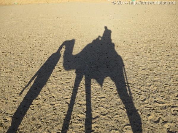 11_Kamel-Schatten-Selfie-Wueste-Hurghada-Aegypten