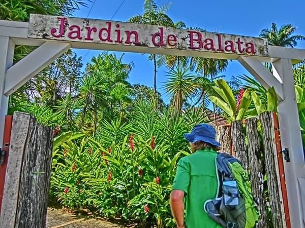 24_Jardin-de-Balata-Martinique-Karibik