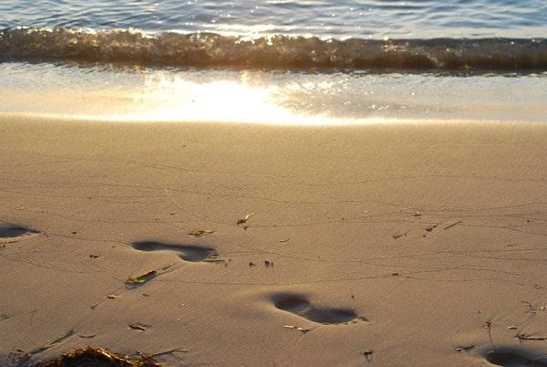 09_Malediven-Urlaub-Spuren-im-Sand