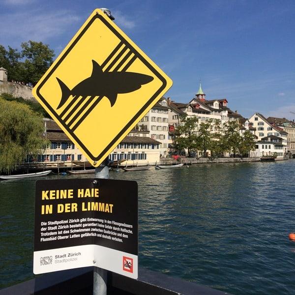 Zürich Sehenswürdigkeiten Schweiz Keine Haie in der Limmat