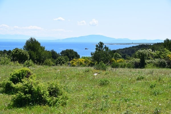 03_Naturpark-Kamenjak-Premantura-Istrien-Kroatien