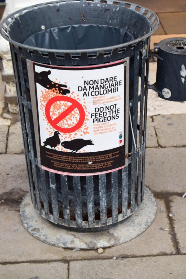 Venedig Tauben füttern verboten Mülleimer
