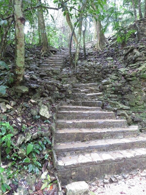Palenque Mexiko Sehenswürdigkeiten Maya Stätte Ruine Treppen Urwald