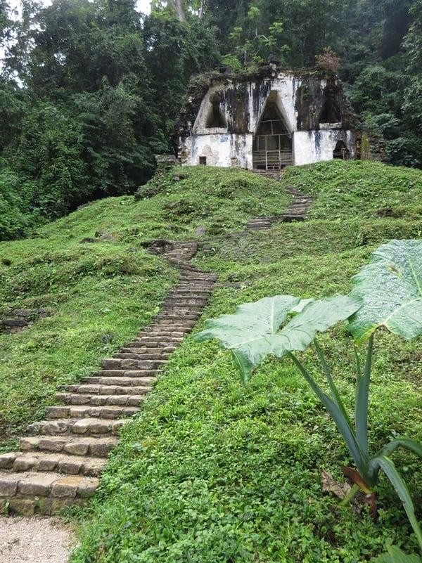 Palenque Mexiko Sehenswürdigkeiten Blätterkreuztempel Maya Stätte