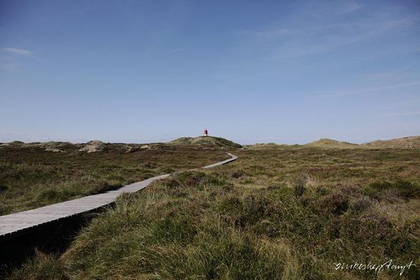 Amrum Duenen Nordsee Nordfriesland