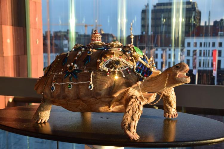 29 schildkroete museum aan de stroom antwerpen belgien a rosa flusskreuzfahrt rhein