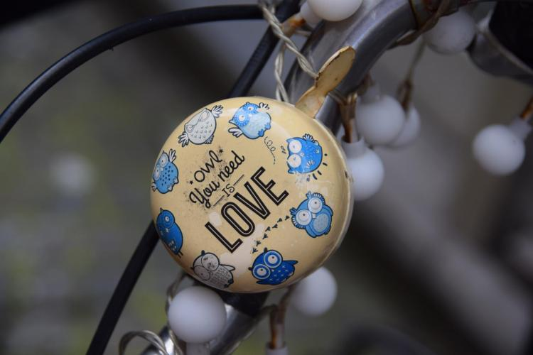 30 owl you need is love antwerpen belgien a rosa flusskreuzfahrt rhein