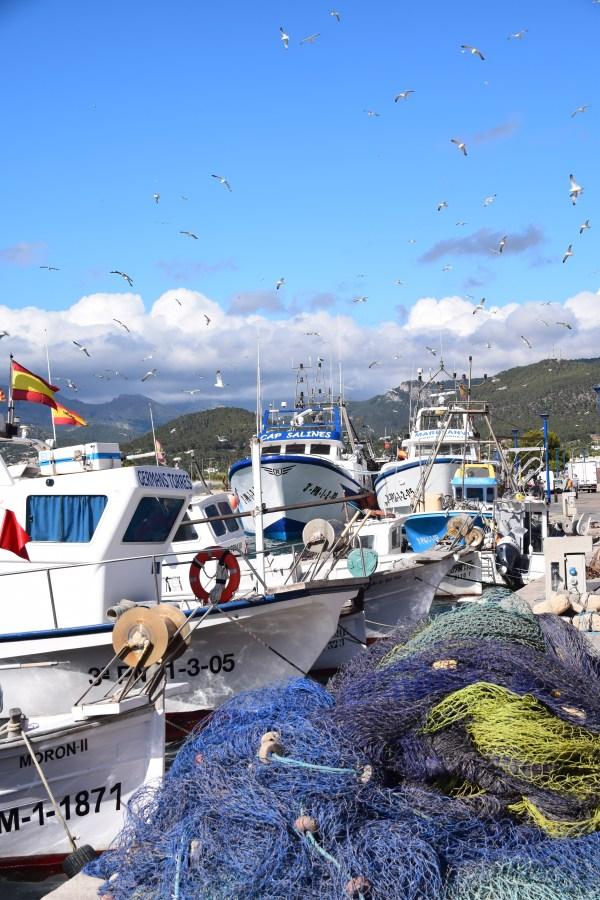 20 mallorca hafen fischerboote port d andratx spanien