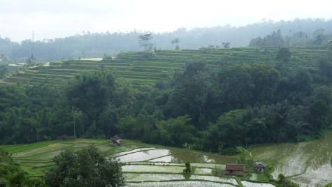 2011-03-18 Bali 125