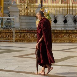 Burma 915