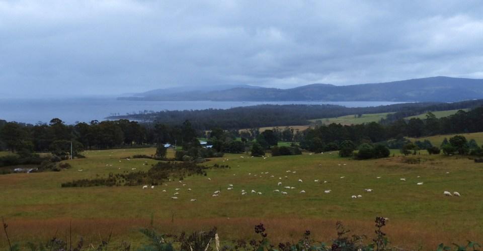 2015-02-01 01.02. - Hobart 013
