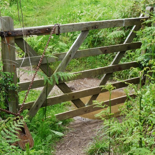 Wanderweg in England