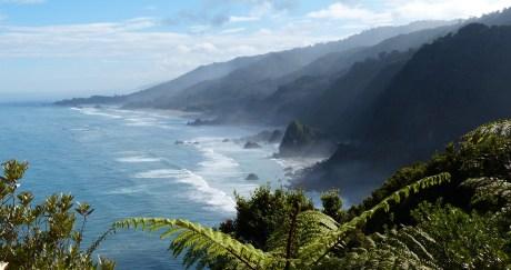Westküste Südinsel (Neuseeland )