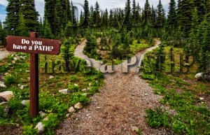 Read more about the article Do You Have A Path?