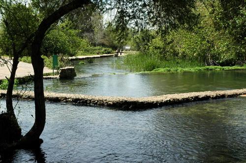 Source of the Jordan River at Caesarea Philippi. Photo by Ferrell Jenkins.