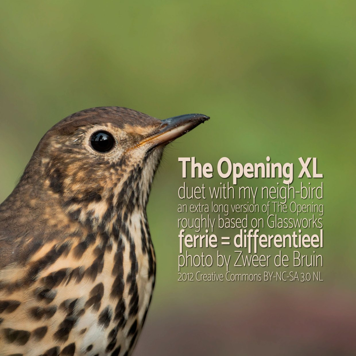The Opening XL cover