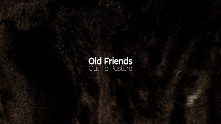 Old Friends still 10