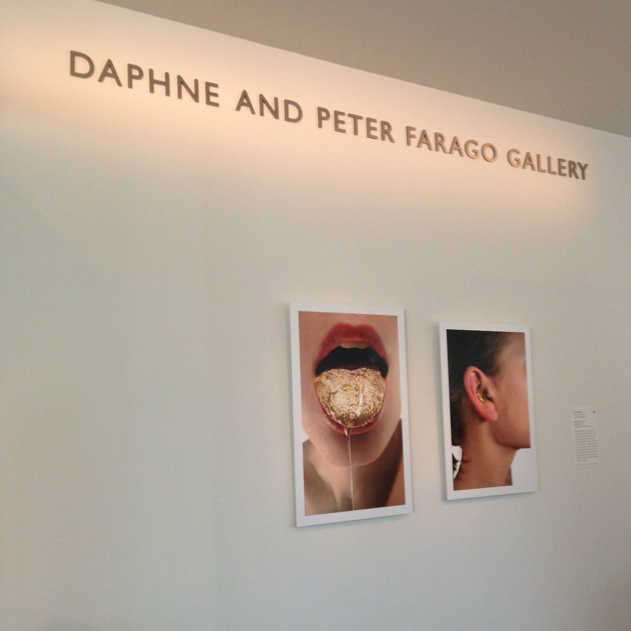 The Daphne Farago Gallery, MFA Boston, photos by Lauren Kalman