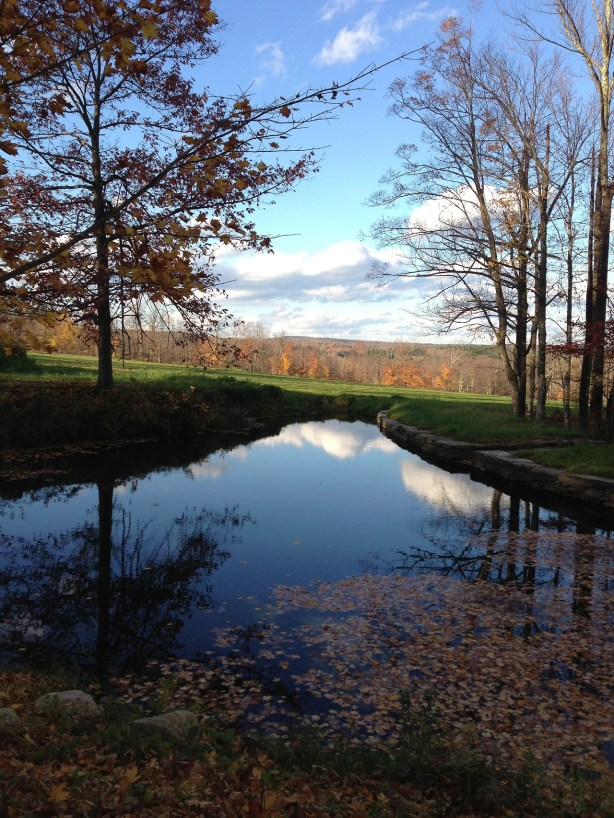 Paul Scott's USA Tour- dual residencies at Project Art and the Clay Studio - Bryant Homestead