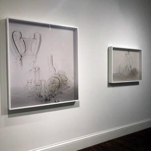 """Derived from the Decorative"", Cheekwood Estates and Gardens, 2019, Nashville, TN"