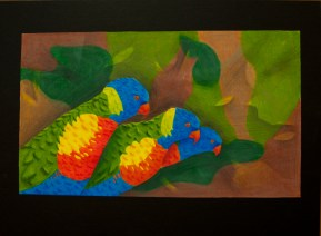 """""""Birds of Color"""" by Erica Taylor"""
