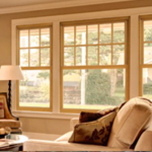 Window Replacement Contractors Delaware