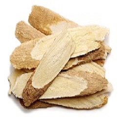 astragalus root and infection