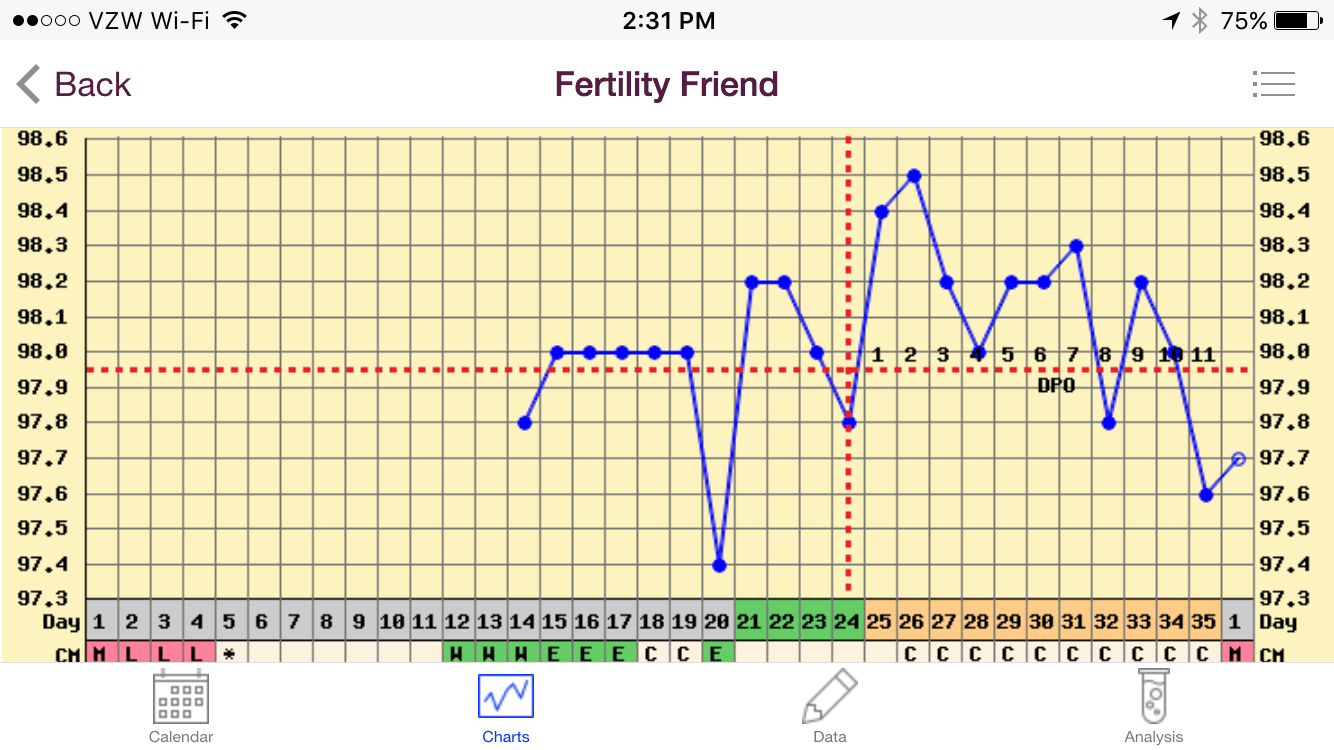also irregular bbt chart got you down  fertility and beyond rh fertility andbeyond wordpress