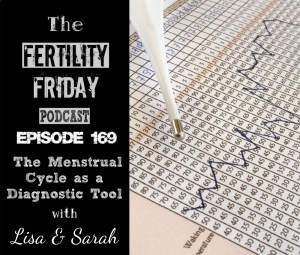 [On-Air Client Session] FFP 169 | The Menstrual Cycle as a Diagnostic Tool | Sarah & Lisa