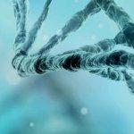 Reproductive Genomics Twitter