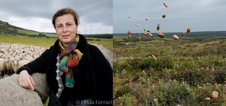 SCIRARINDI PER LE SCUOLE – Incontro sull'innovazione con Daniela Ducato e l'associazione L'uomo che pianta gli Alberi