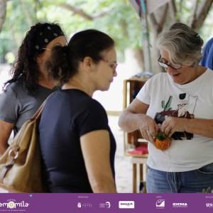 Festival Camomila Etapa 1 - (101)