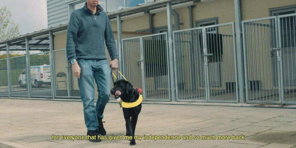 KC: Guide Dogs