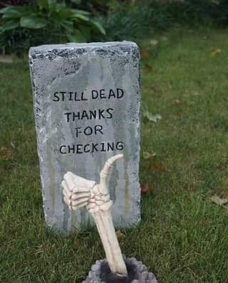 """May be an image of outdoors and text that says """"STILL DEAD THANKS FOR CHECK ING"""""""