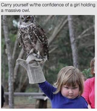"""May be an image of 1 person, bird, outdoors and text that says """"Carry yourself w/the confidence of a girl holding a massive owl."""""""