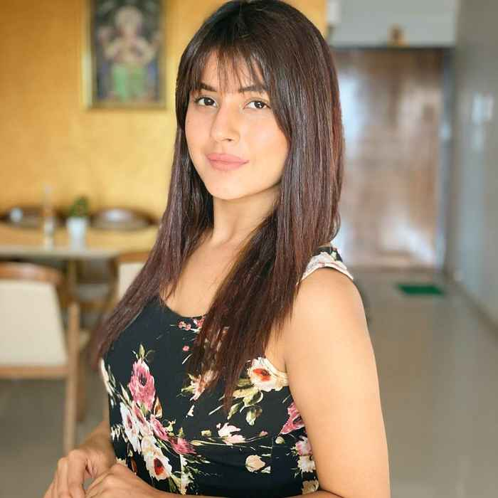 Shehnaz Gill HD Picture