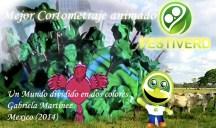 LlanosVenezuela copia