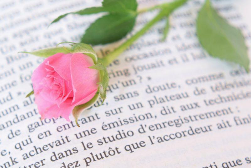 フランス語とバラ